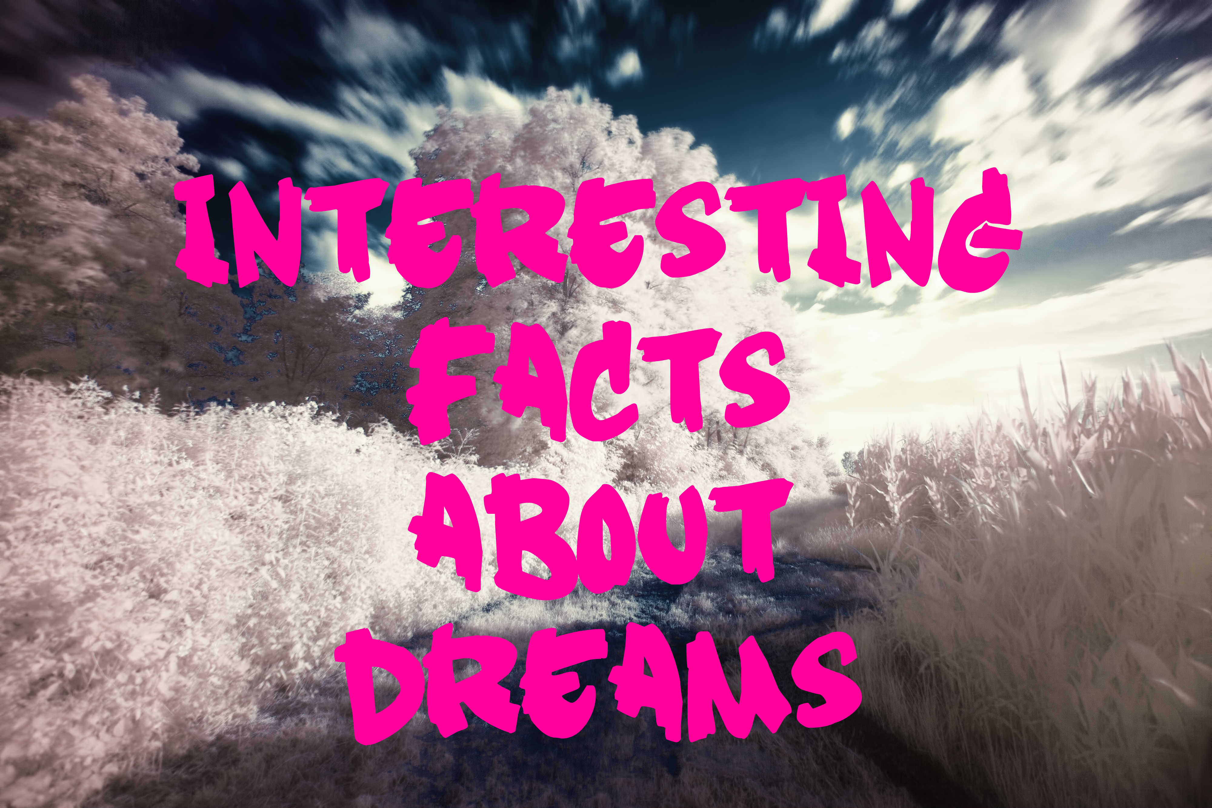 Dreams Facts