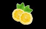 Lemon Citrus