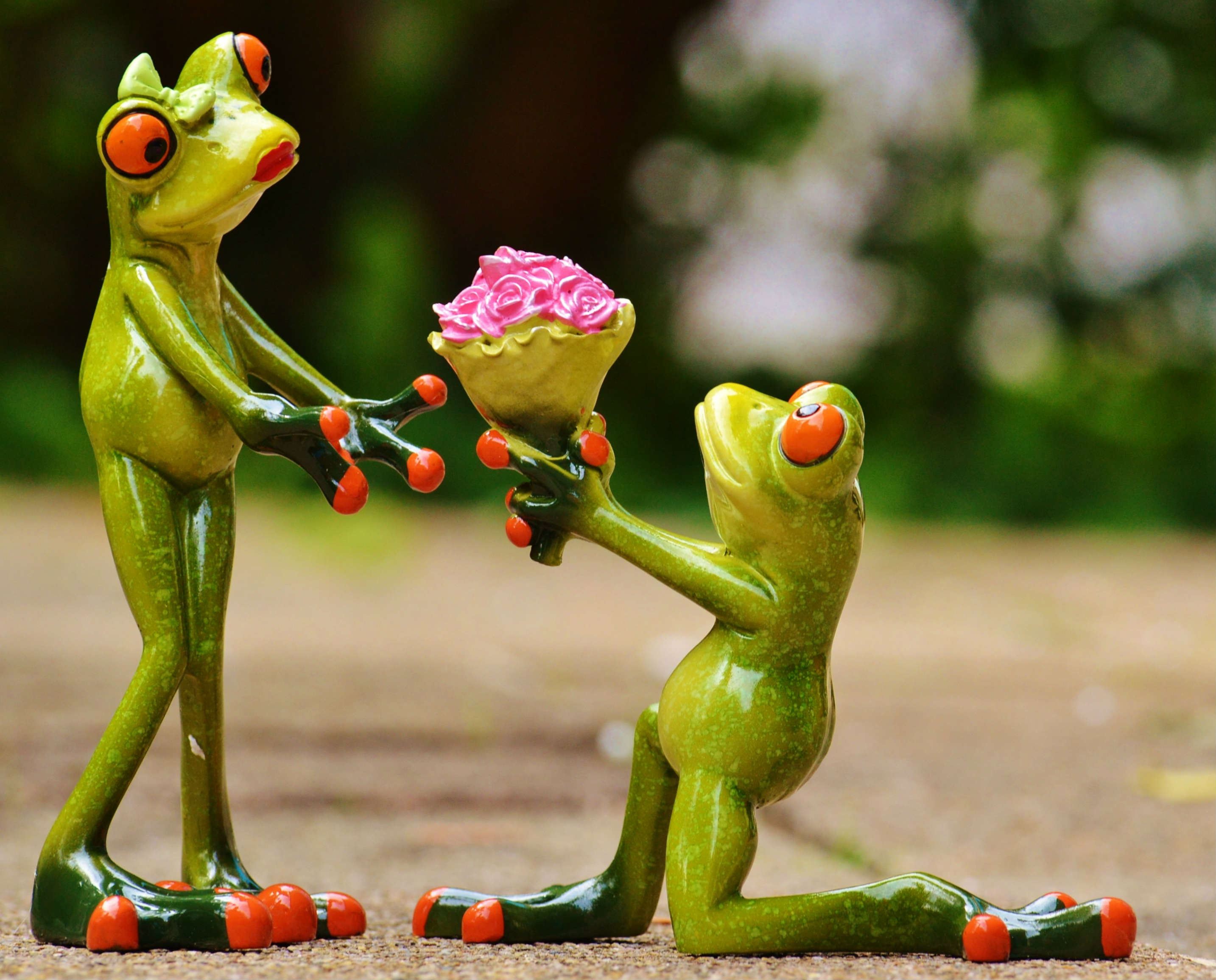 Love Proposal Frog
