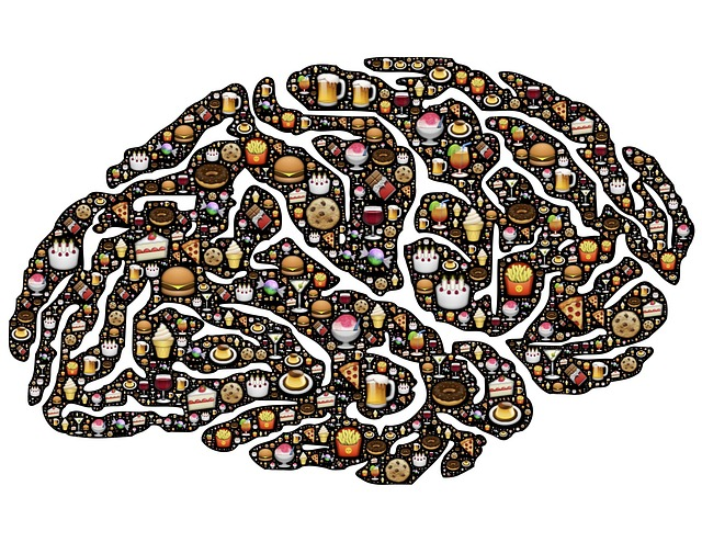 Foods for Brain Power