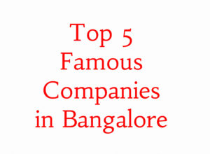 Top 5 Famous Companies in Bangalore