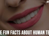 Some Fun Facts About Human Teeth