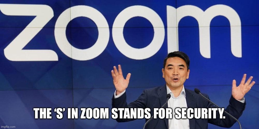 Zoom in 2020