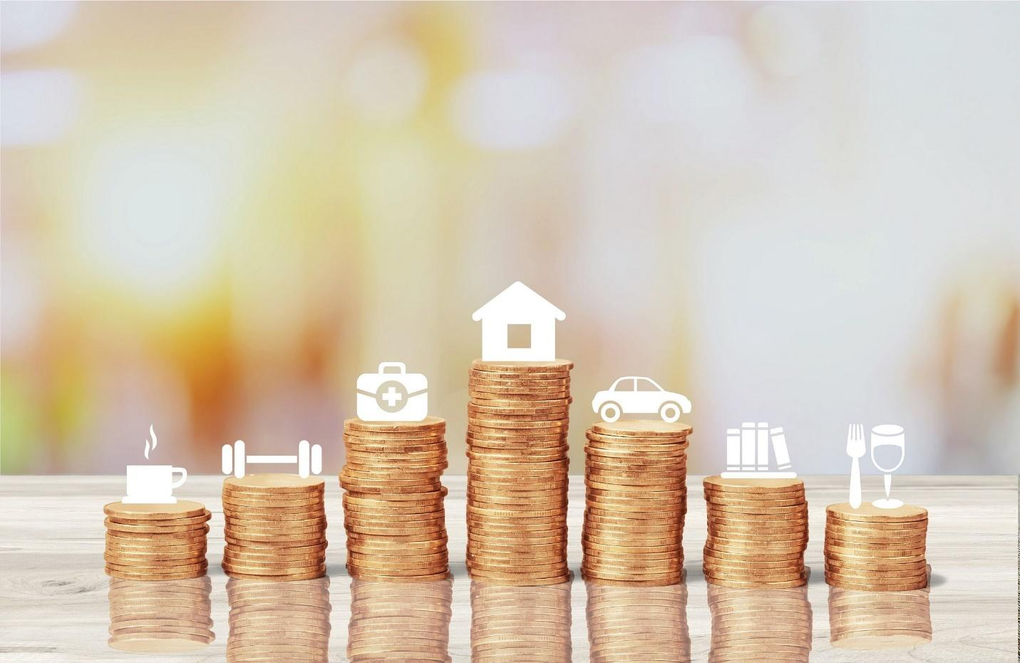 Uses of Consumer Loans